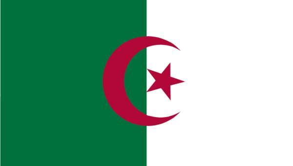 Zastava Alzira
