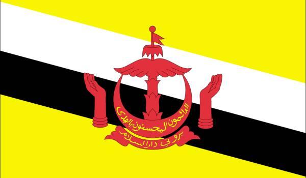 zastava bruneja